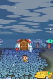 Animal Crossing: Wild World 1