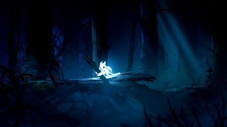 Ori and the Blind Forest: Definitive Edition 0